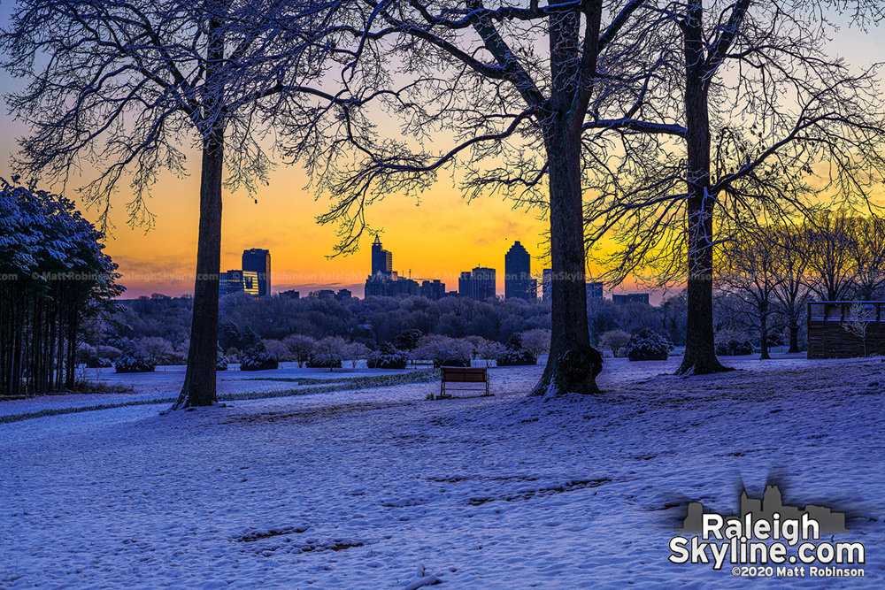 Snowy trees at sunrise with downtown Raleigh