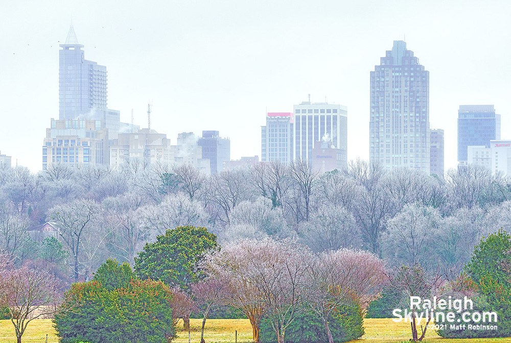 Ice glazed trees with downtown Raleigh winter 2021